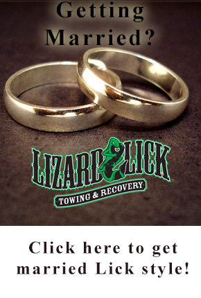 Get Married at the Lick!